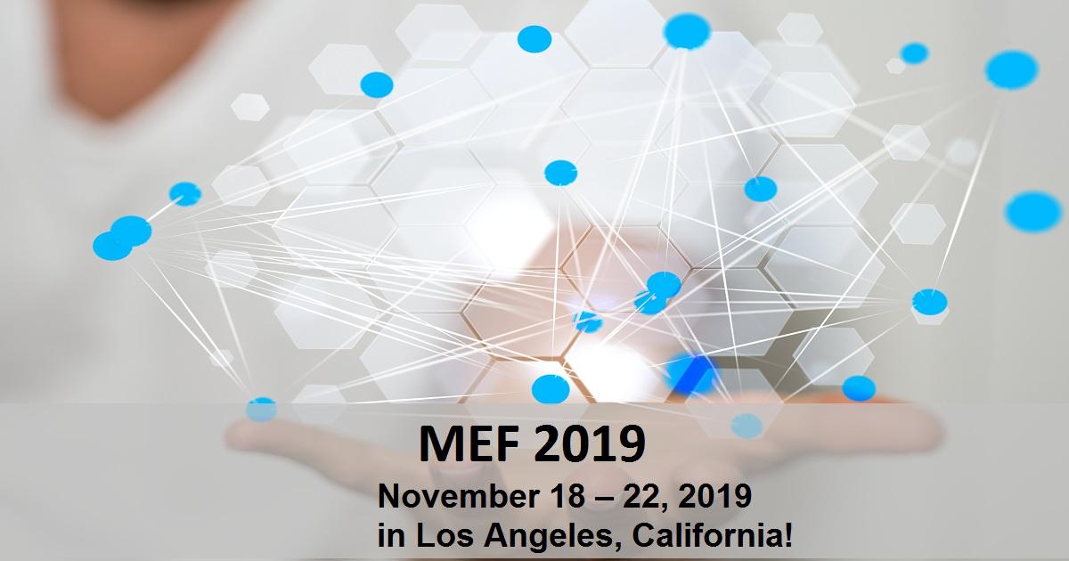 MEF 2019