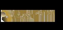 The VIRTUALIZATION NETWORK